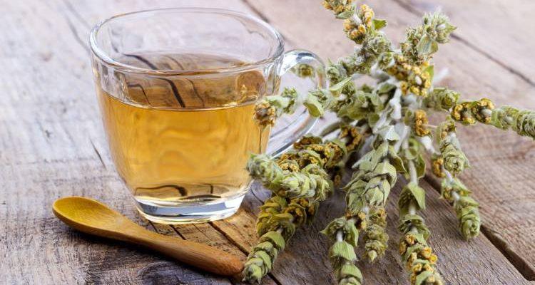 Τσάι του Βουνού VS Τσάι Πράσινο